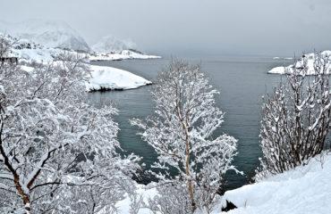 Skitouren Senja, Norwegen 05